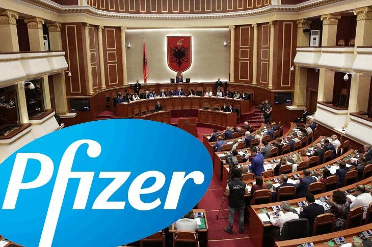The Assembly Will Consider The Vaccine Agreement With Pfizer On January 28, 2021